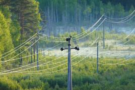 Elektrilevi toob klientideni ülikiire Elisa interneti ja Elamuse teleteenuse