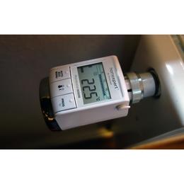 Honeywell Homexpert by Rondostat HR25 Energy Radiator Thermostat