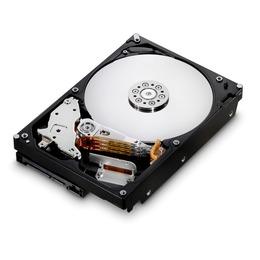 """HGST Deskstar 7K1000 1TB 3.5"""" 7200rpm 32MB SATA 3Gb/s HDE721010SLA330 (0A38028)"""