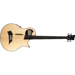 Warwick Warwick Alien Acoustic Bass 4 Prefix Fretless