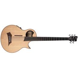 Warwick Warwick Alien Acoustic Bass 5 Prefix Fretted