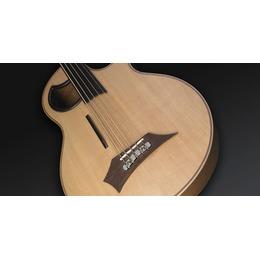 Warwick Warwick Alien Acoustic Bass 5 Prefix Fretless Left