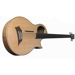 Warwick Warwick Alien Acoustic Bass 5 Prefix Fretless