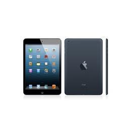 Apple  Kasutatud iPad Mini 16 GB Wi-Fi Black (Grade C)