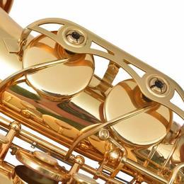 vidaXL altsaksofon kollane messing, kuldlakiga Bb 70047