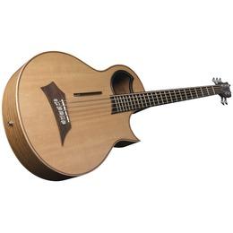 Warwick Warwick Alien Acoustic Bass 5 Prefix Fretted Left