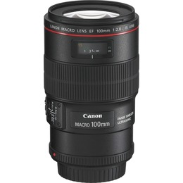 Canon  EF 100mm f/2.8 L USM IS Macro