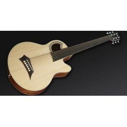 Warwick Warwick Alien Acoustic Bass 6 Prefix Fretless
